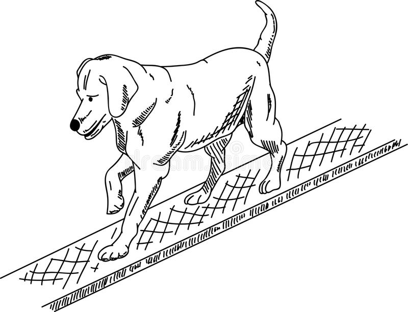 Download Dog agility stock vector. Illustration of active, line - 19078199