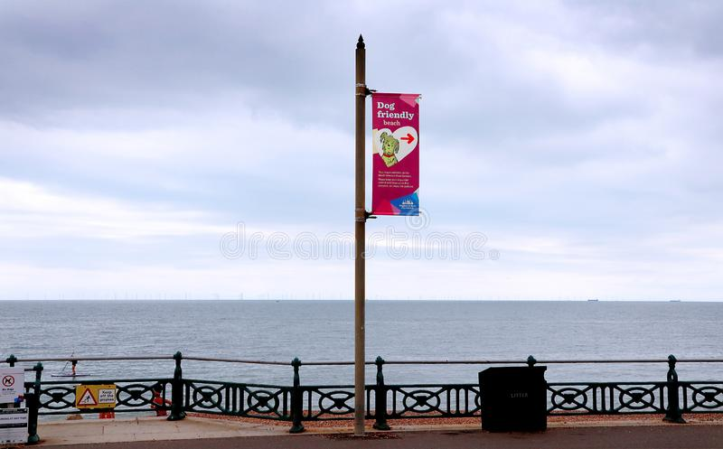 Dog area on Brighton and Hove beach. A flag on Brighton and Hove beach indicating where dogs could go and play by the sea royalty free stock photography