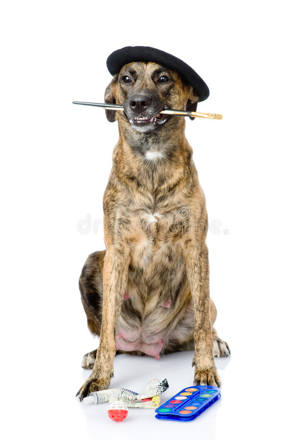 Dog as a painter with a brush. isolated on white background.  royalty free stock photography