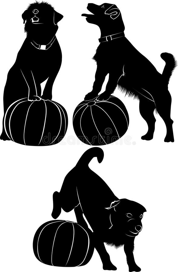 Dog and ball. dogs vector drawing on white background royalty free illustration