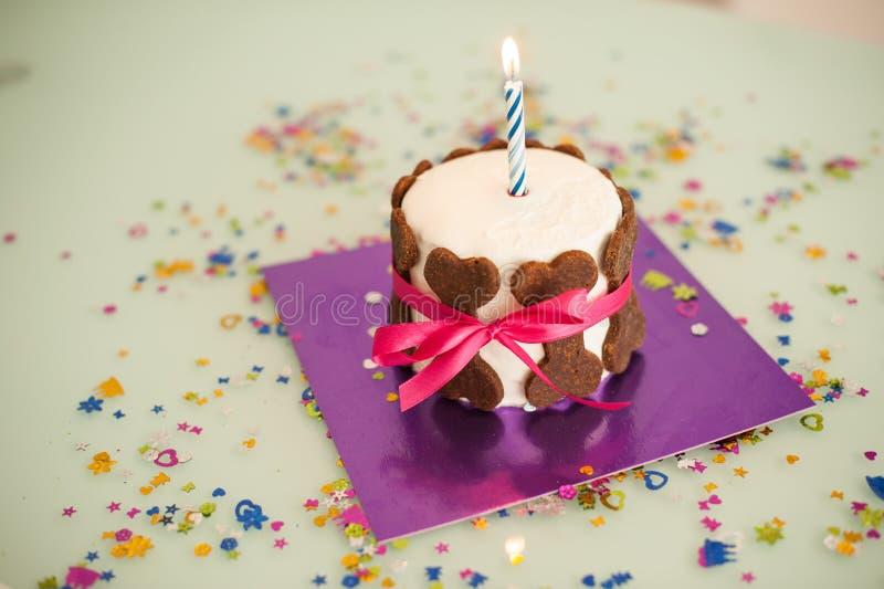 Dog birthday cake with bone cookies, ribbon , candle. Dog birthday cake with bone cookies, ribbon and candle stock image