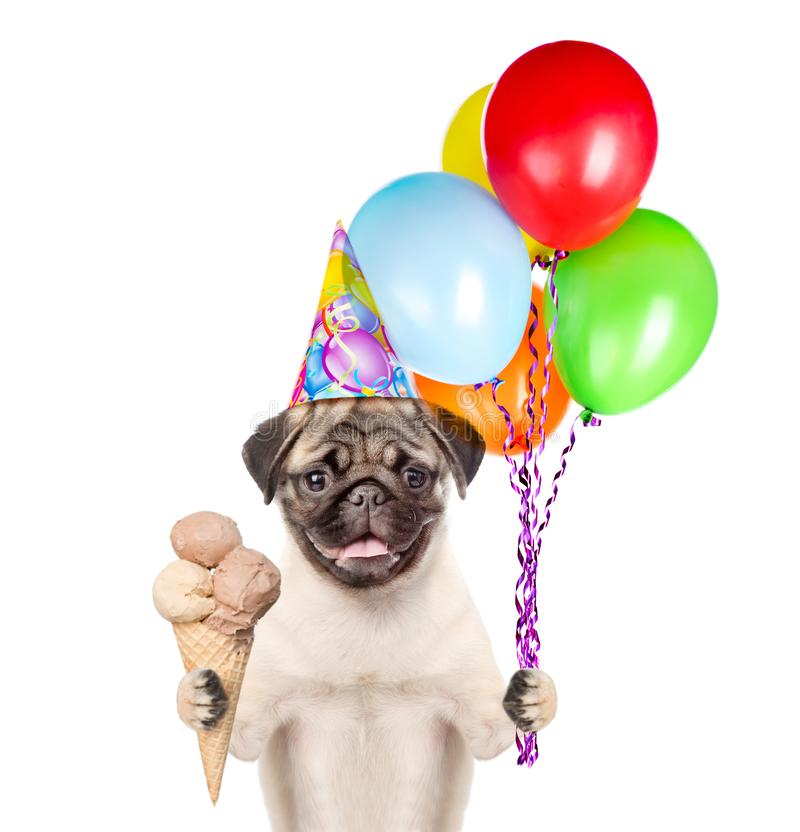 Dog in birthday hat holding balloons and ice cream. isolated on white background.  stock photos