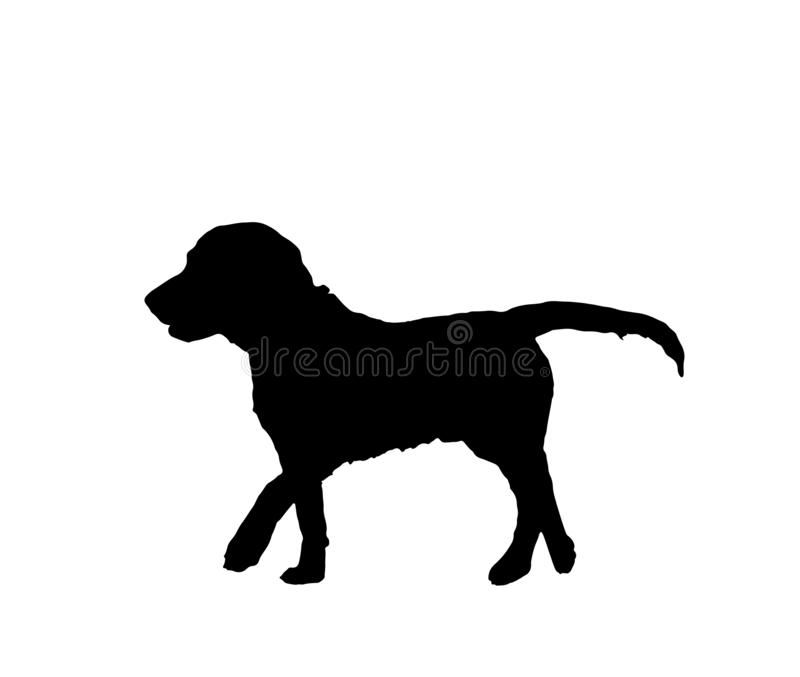 Dog black silhouette isolated on white background, vector eps 10. Dog black silhouette isolated on white background. Simple lovely domestic animal profile stock illustration