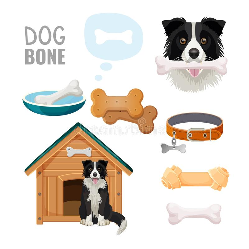 Dog bone promotional poster of zoo market goods vector illustration