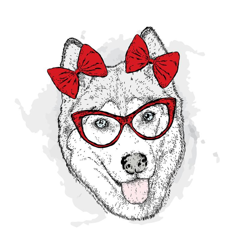 Dog with bows. Vector illustration. Cute Husky. stock illustration