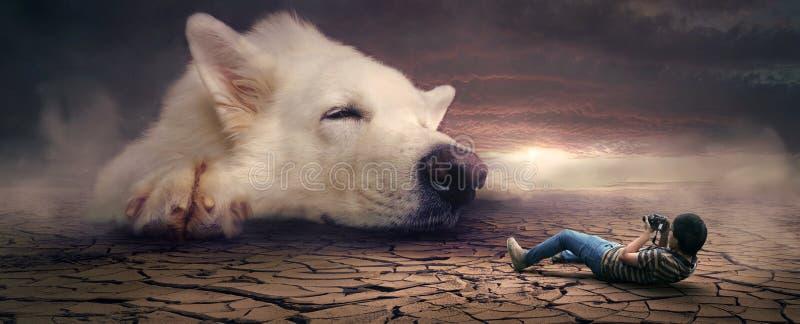 Dog Breed Group, Dog Breed, Dog, Dog Like Mammal royalty free stock photo