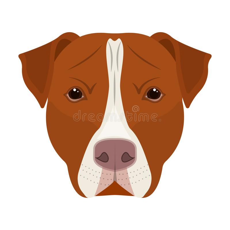 Dog breed, Stafford.Muzzle of Stafford single icon in cartoon style vector symbol stock illustration web. Dog breed, Stafford.Muzzle of Stafford single icon in stock illustration