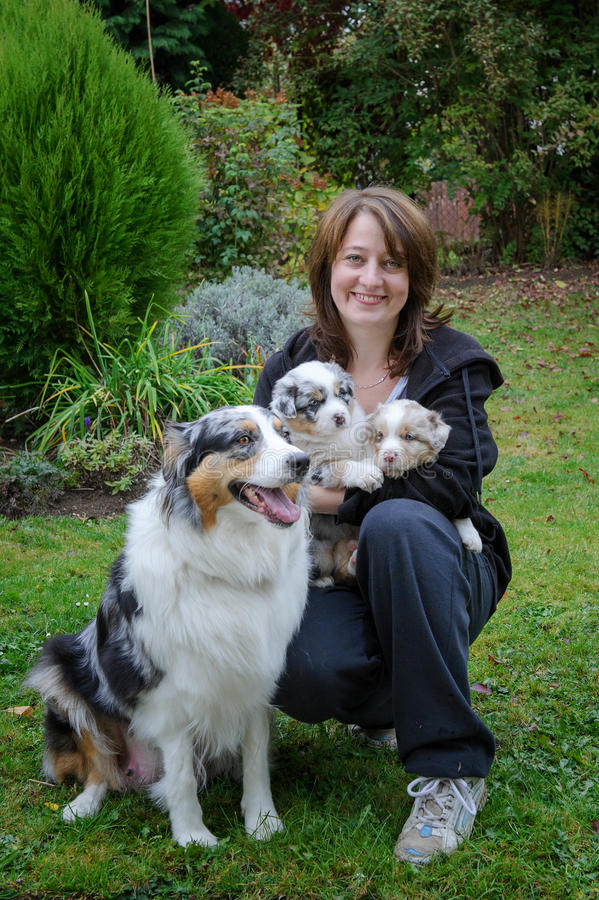Dog breeder with Australian Shepherd adult female dog and her puppies in arms royalty free stock photography