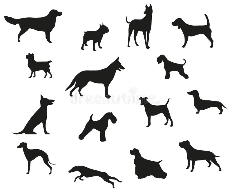 Dog breeds black silhouettes vector illustration