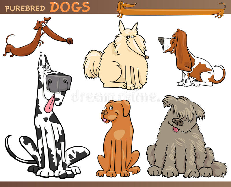 Download Dog breeds cartoon set stock vector. Image of cute, clip - 27833648