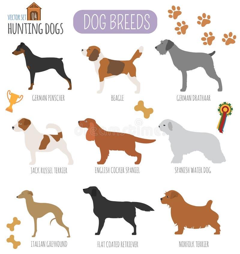 Dog breeds. Hunting dog set icon. Flat style vector illustration