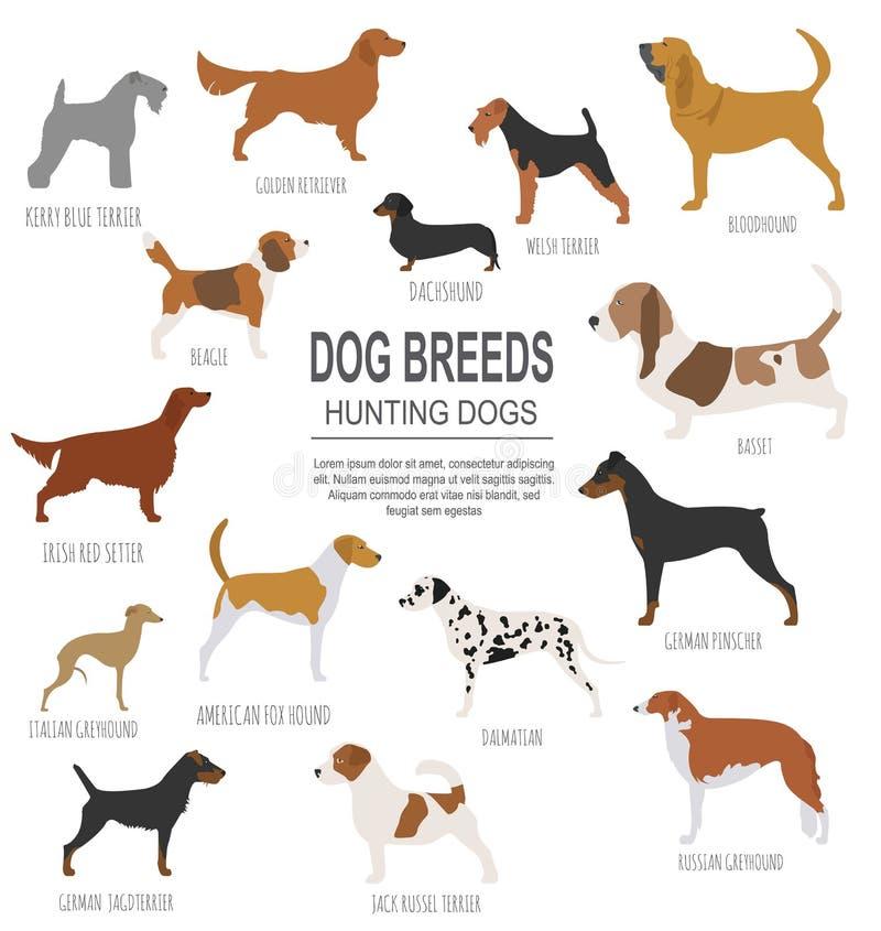Dog breeds. Hunting dog set icon. Flat style stock illustration