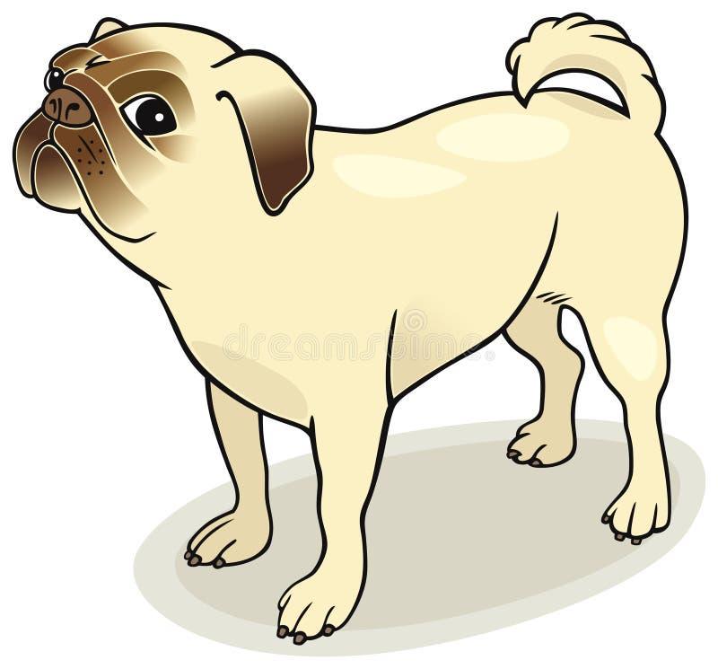 Dog Breeds: Pug Royalty Free Stock Images
