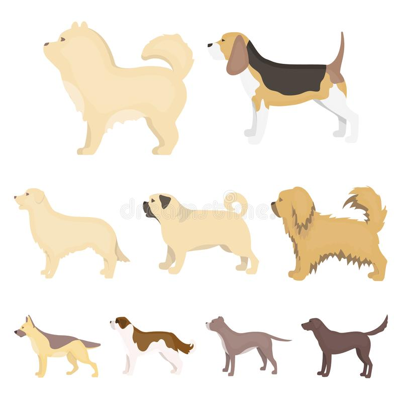 Dog breeds set icons in cartoon style. Big collection of dog breeds vector symbol stock illustration vector illustration