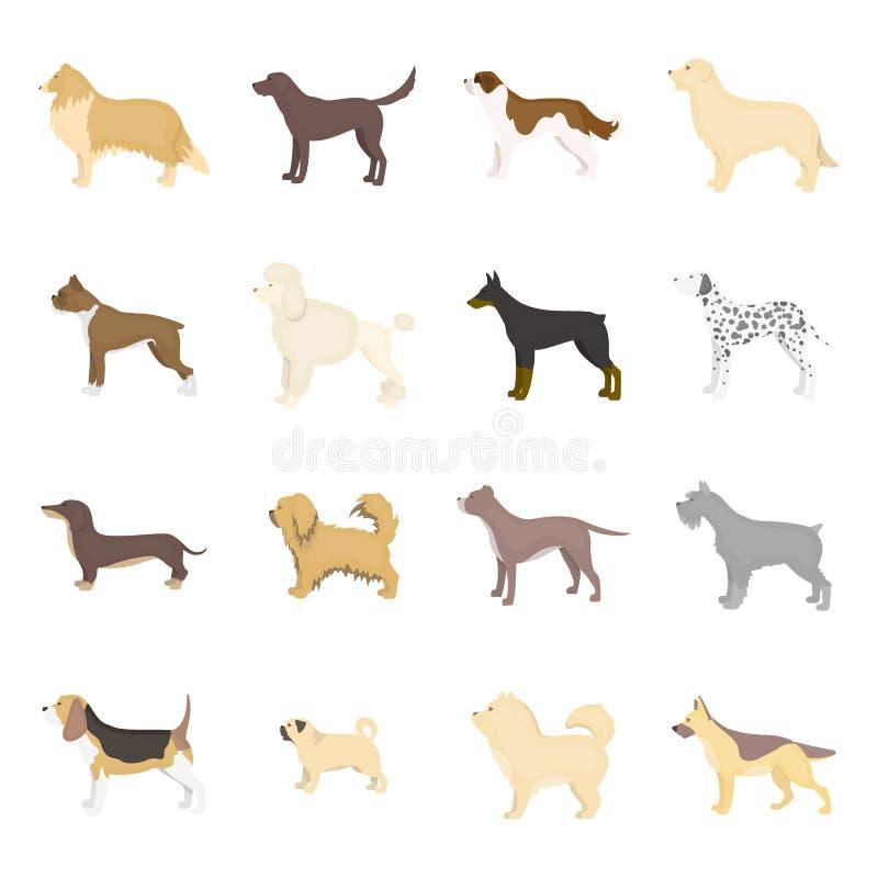 Dog breeds vector icon set in cartoon style. stock illustration