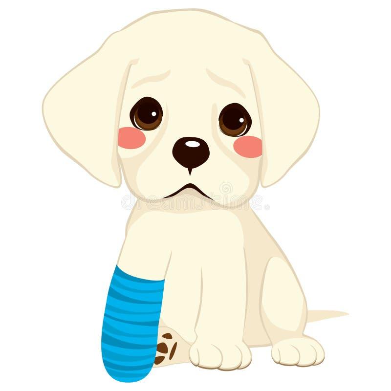 Dog Broken Leg. Young little sad dog sitting with broken leg and blue bandage stock illustration