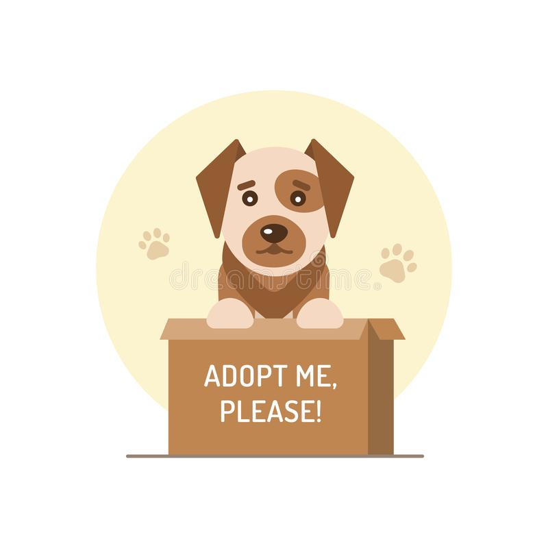 Dog in a cardboard box. With the inscription adopt me, please. Flat design. Vector illustration vector illustration