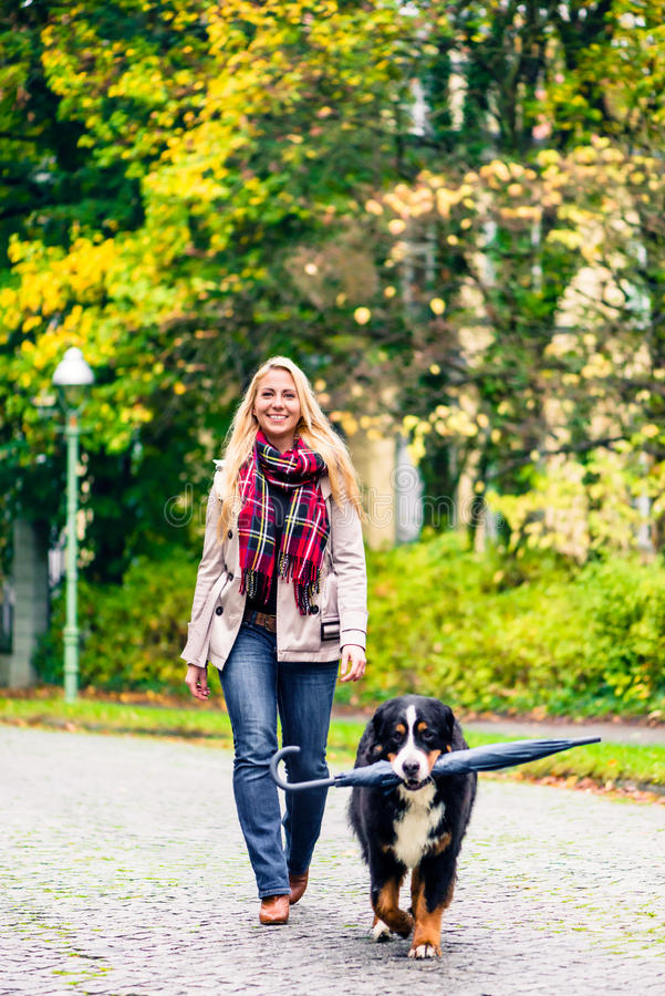 Dog carrying umbrella of his mom in autumn walk royalty free stock photo