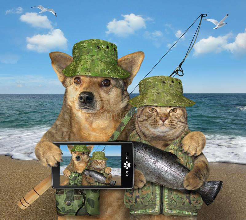 Dog and cat fishing 2. The dog fisher with a smartphone is hugging the cat with a caught fish after the fishing on the seashore royalty free stock photography