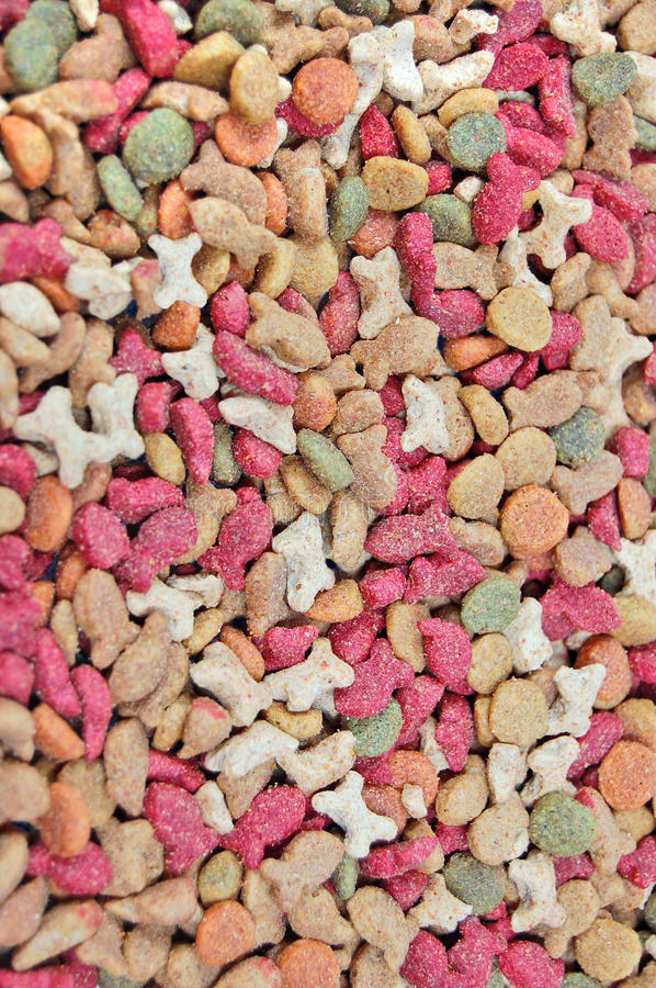 Dog and cat food close up. Makro royalty free stock image