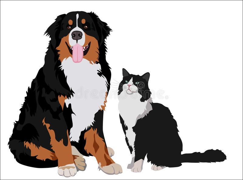 Dog and cat friends. Animals standing together. Vector illustration. vector illustration