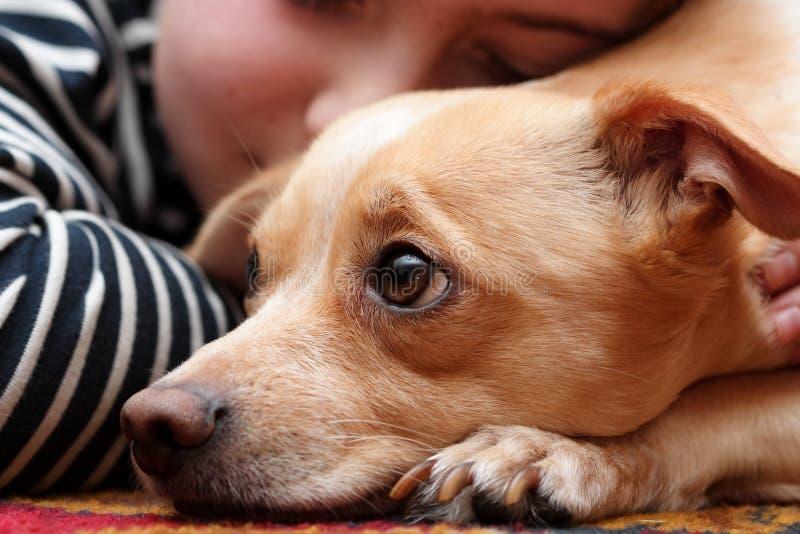 Dog and child royalty free stock photo