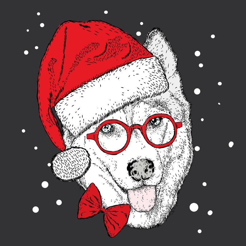 Dog in Christmas hat and sunglasses. Vector illustration. Cute Husky. vector illustration