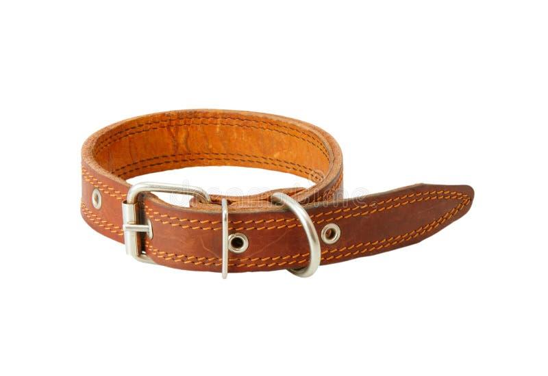 Download Dog Collar Royalty Free Stock Image - Image: 19440096