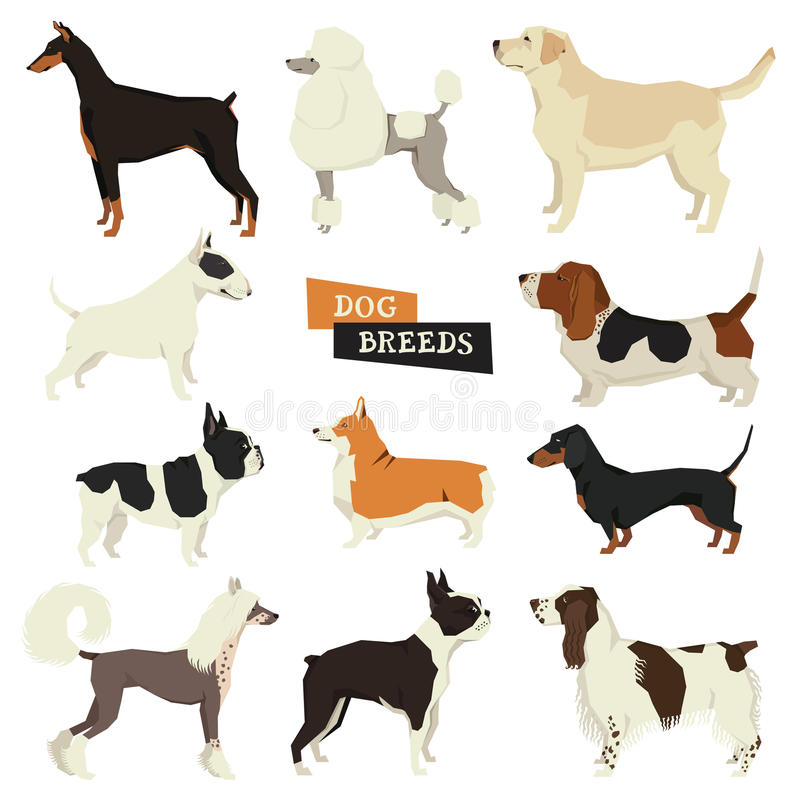 Dog collection. Geometric style. Vector set of 11 dog breeds. royalty free illustration