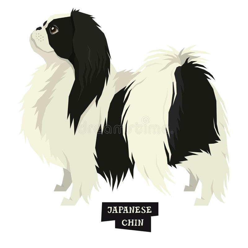 Dog collection Japanese Chin Geometric style Isolated object. Set vector illustration