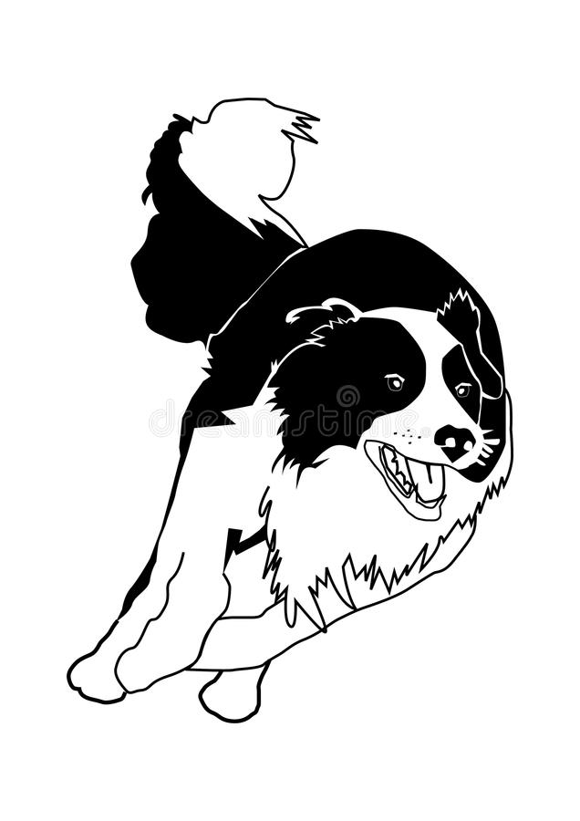 Dog Collie Stock Vector Illustration Of Puppy Fair