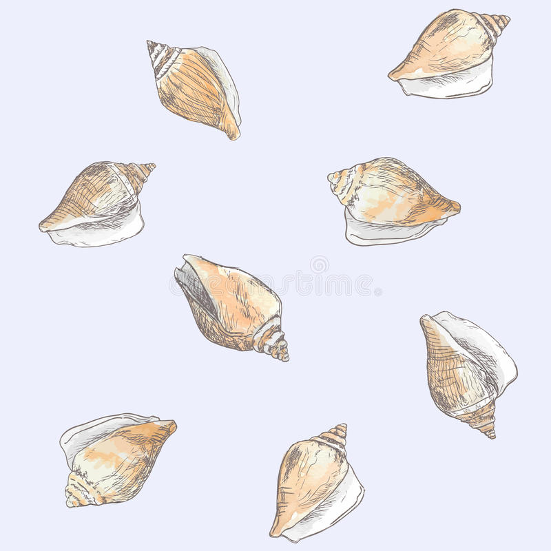 Dog conch , wing shell hand drawn sketch vector. Sea food collection royalty free illustration