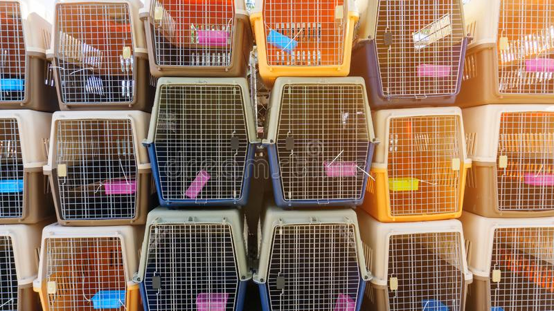 Dog crates carrying for dogs and cats to be loaded into a plane. Portable plastic animal cage travel box. Travel transportation, v. Eterinary clinic and pet care stock photography