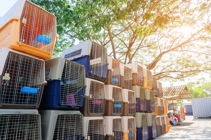 Dog crates carrying for dogs and cats to be loaded into a plane. Portable plastic animal cage travel box. Travel transportation, v. Eterinary clinic and pet care stock photo