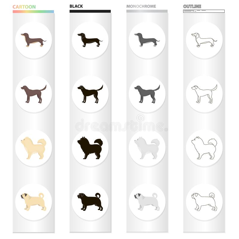 Dog dachshund, chow chow, pug breed, labrador. Dog breeds set collection icons in cartoon black monochrome outline style vector illustration
