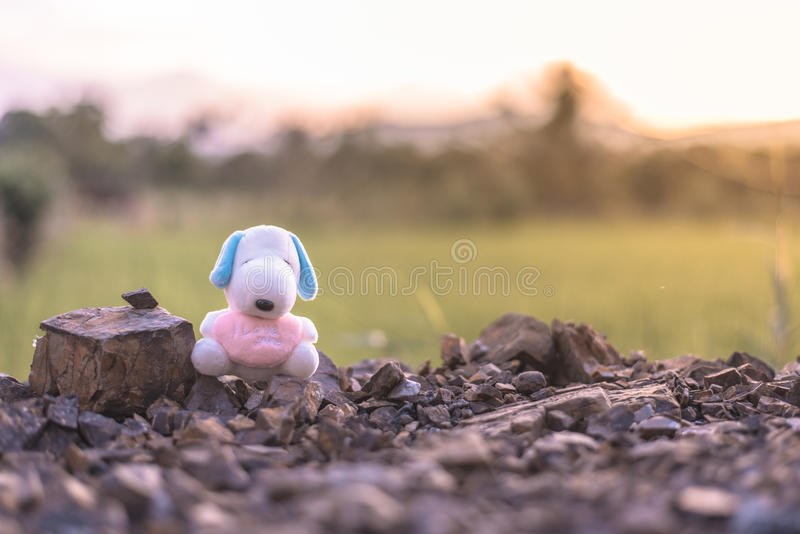 Dog doll on field with flare effect and vintage stock photo