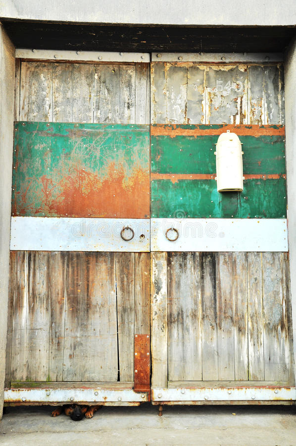 Dog & Door stock photos