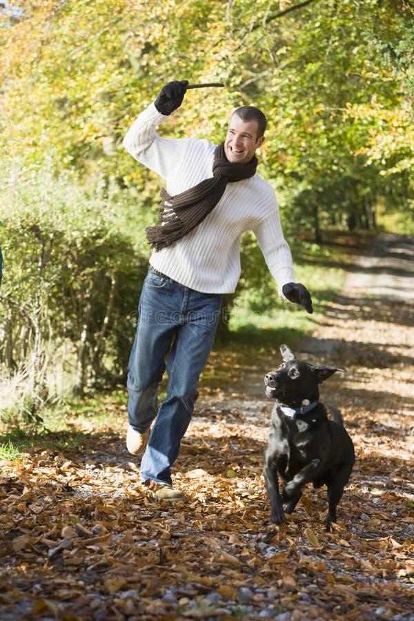 dog exercising man woodland στοκ φωτογραφία