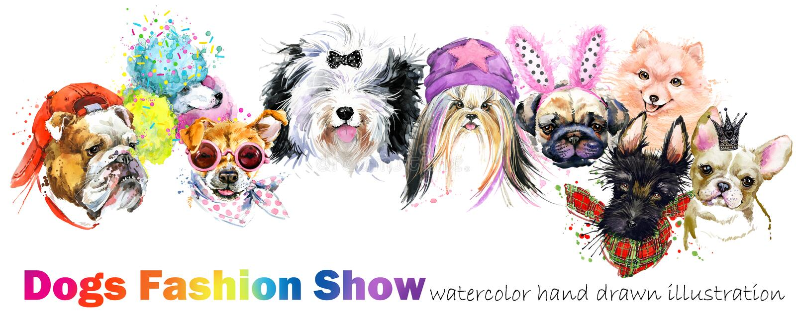 Dog with fashion accessories. Trendy dogs breed set. Pets shop background. cute domestic animal vector illustration