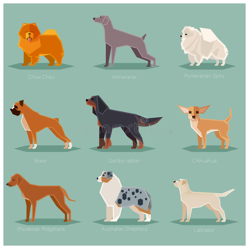 Dog flat icons set. Vector image of the set of dogs flat icons vector illustration