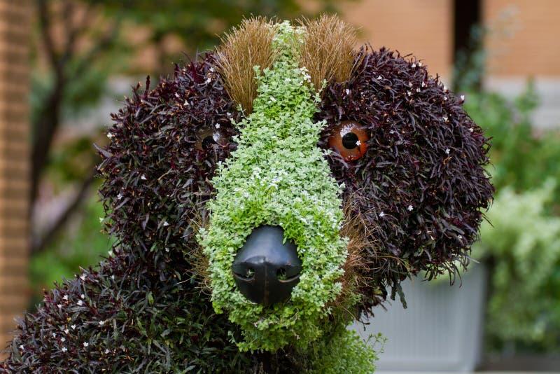 Download Dog Floral Sculpture Stock Image - Image: 26559291