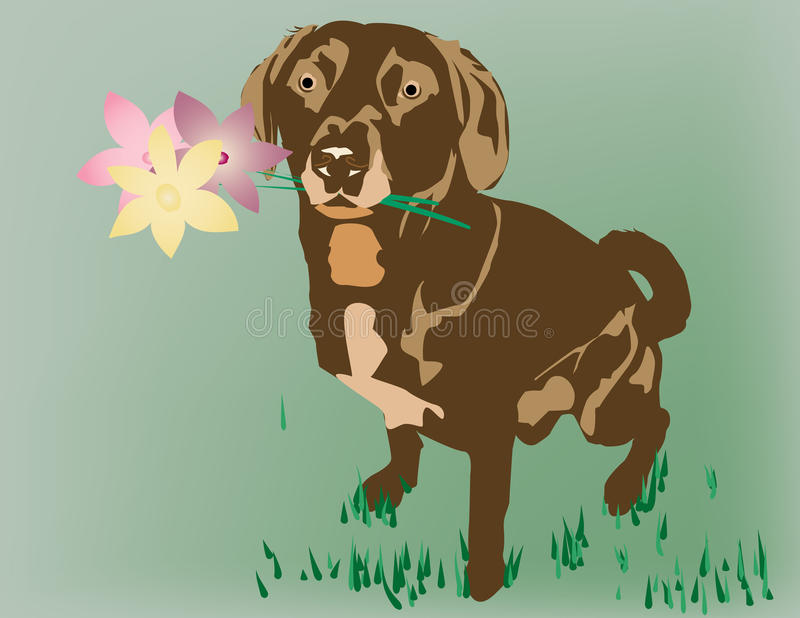 Download Dog with Flowers stock photo. Image of grass, brown, flowers - 15189188