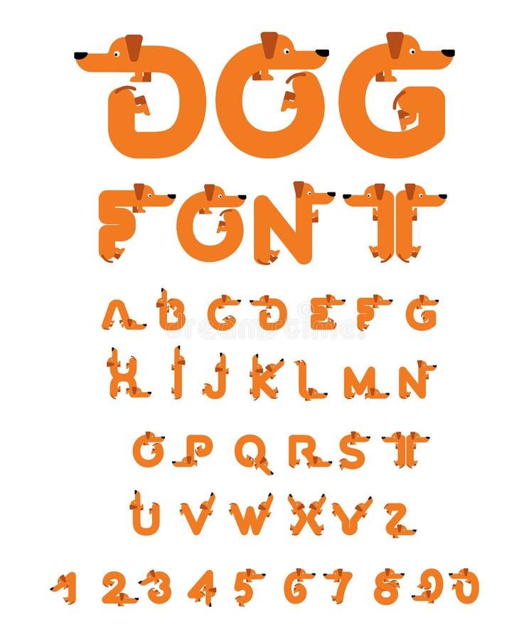 Dog font. Dachshund alphabet. Lettering home animal. ABC pet.  vector illustration
