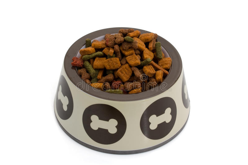 Dog Food. A dog dish with dog food isolated on white, doggy food royalty free stock image