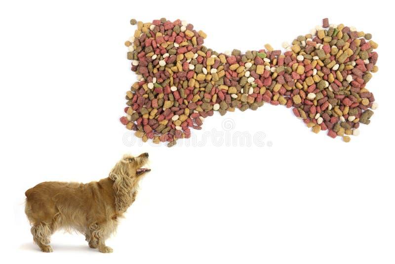 Download Dog Food. Stock Photo - Image: 25561510
