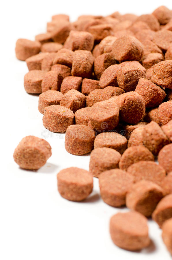 Dog food. Brown pet food on white background. Shallow depth of field royalty free stock photography