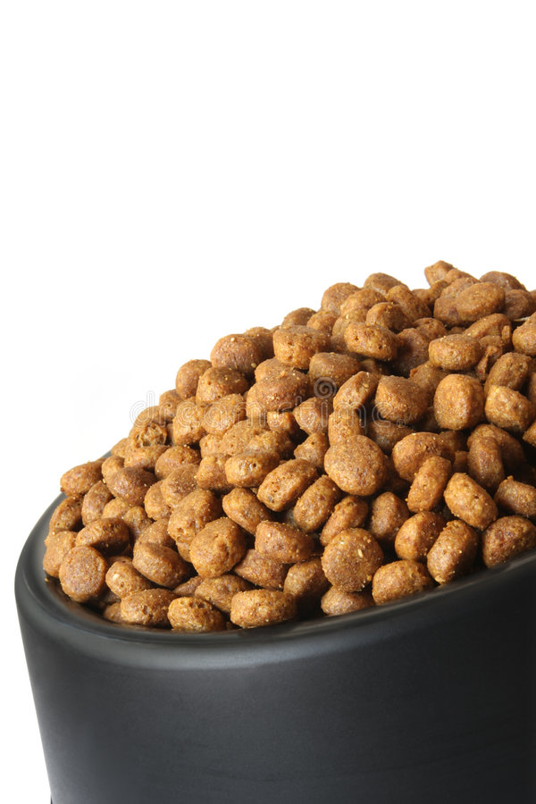 Dog Food. Dry dog food in a black dog dish, isolated on white royalty free stock image
