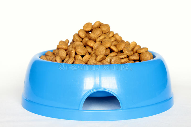 Dog food in bowl royalty free stock images