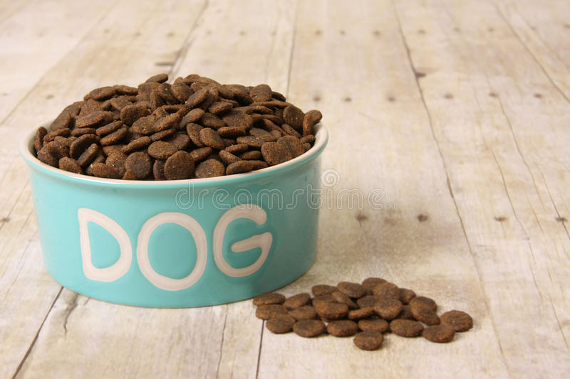 Dog food in a bowl. Bowl with dog food on a hardwood floor royalty free stock photography