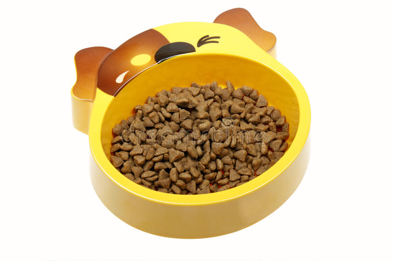 Dog food bowl. Dog bowl with dry dog food on white royalty free stock photography